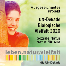 UN-Dekade Biologische Vielfalt zeichnet den Kinderwald Hannover aus!
